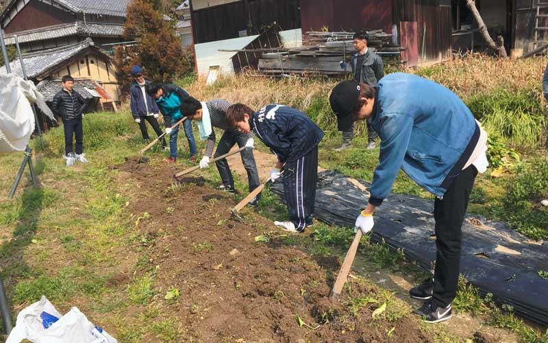 農業体験授業を行う大学生
