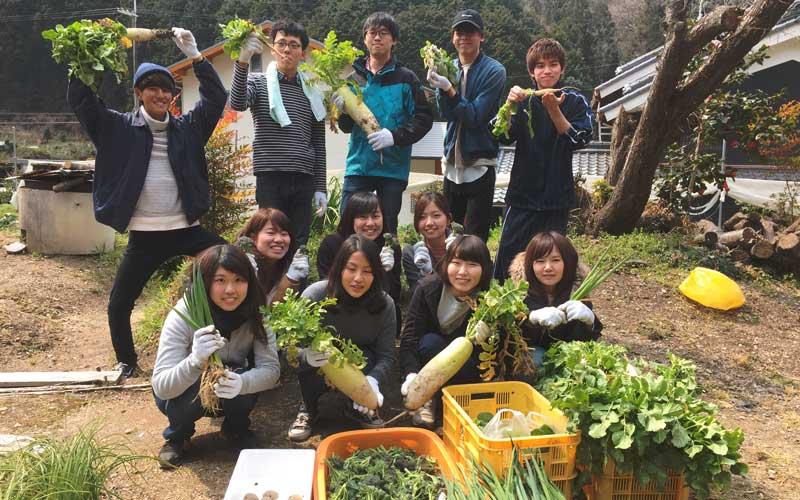 柿の葉寿司作り体験行う大学生